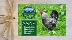 """Appalachian Sustainable Agriculture Project • www.themastfarminn.com/asapconnections • """"Our vision is of strong farms, thriving local food economies, and healthy communities where farming is valued as central to our heritage and our future.  Our mission is to help local farms thrive, link farmers to markets and supporters, and build healthy communities through connections to local food."""""""