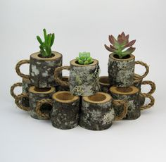 24 Rustic Wedding Favors Succulent Log Planters Rustic Centerpiece Woodland Wedding Outdoor Wedding Decor Natural Wedding Coffee Mugs by WoodlandFever on Etsy https://www.etsy.com/listing/236757922/24-rustic-wedding-favors-succulent-log