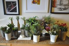 Nossa coleção de miniarranjos acaba de ficar pronta!  São minivasos feitos de copos e garrafas de vidro reciclado e as flores permanentes de alto padrão que você já viu por aqui! Dá uma passadinha lá no nosso site pra conhecer! Preços a partir de R$ 22,00.