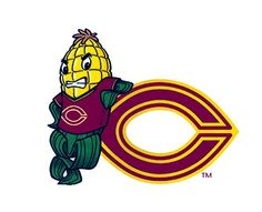 Concordia College Cobbers, NCAA Division III/ Minnesota Intercollegiate Athletic Conference, Moorhead, Minnesota