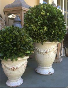 "Med Provence Urn - White (boxwood sold separately) 7"" x 8"" Small Provence Urn - White ( Boxwood sold separately) 5.5"" x 5.5"""