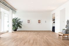 Interior design by architect Hubert Crijns and associates. Connection of the yoga studio to a tranquil garden created a serene space amids the buzzing city of The Hague. Yoga Studio Interior, Yoga Studio Home, Pilates Studio, The Loft, Dance Studio Design, Yoga Room Design, Pilates Workout Routine, Pilates Yoga, Pilates Reformer