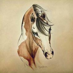 """Limited Edition """"Cowgirl"""" represents a unique pairing of watercolor and brush pen. Its distinct style is slightly reminiscent of the hand painted illustrations seen in old Western posters at the turn(Beauty Art Watercolor) Horse Drawings, Animal Drawings, Art Drawings, Pencil Drawings, Horse Artwork, Horse Paintings, Pastel Paintings, Art Watercolor, Desenho Tattoo"""