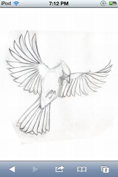 Want it this to be my first tattoo. My grandma loved cardinals and I loved her.