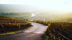 #igphotoworld #picoftheday #photooftheday  #canoneurope #canon6D #geo @natgeotravel #thisislifedaily @traversefrance #nofilter #travel @geomagazin @canon_photos @naturallight #canonteam #landscape @comtederouge #champagne