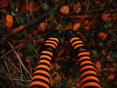 Image discovered by Find images and videos about autumn, fall and Halloween on We Heart It - the app to get lost in what you love. Samhain Halloween, Halloween Town, Holidays Halloween, Happy Halloween, Halloween Decorations, Halloween Clothes, Halloween Inspo, Halloween Pictures, Fall Decorations