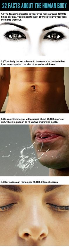 Funny pictures about Facts About The Human Body You Never Learned In School. Oh, and cool pics about Facts About The Human Body You Never Learned In School. Also, Facts About The Human Body You Never Learned In School photos. The More You Know, Good To Know, Did You Know, Just For You, Wtf Fun Facts, True Facts, Random Facts, Odd Facts, Human Body Facts