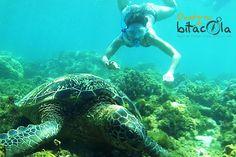 Filipines sota l'aigua, el país de les 7000 illes