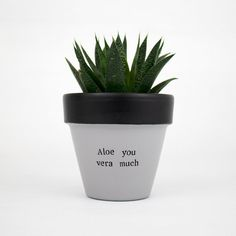 Gifts for husband plant pot aloe vera pot indoor pot I | Etsy Aloe Vera Plant Indoor, Indoor Plant Pots, Indoor Planters, Potted Plants, Gifts For Husband, Gifts For Family, Succulent Puns, Uncle Gifts, Teacher Favorite Things