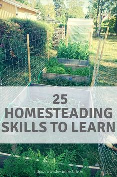25 skills to learn that will become useful on a homestead. Our plan is to practice them on a small scale in the capacity that we can before we actually get our own homestead. Skills To Learn, We Need, Zero Waste, Homesteading, Scale, How To Plan, Learning, Nature, Life