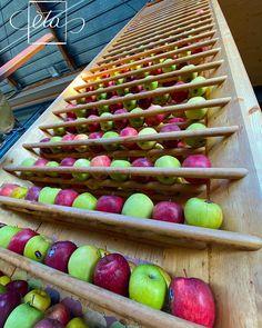 Bologna, Instagram Accounts, Italy, Fruit, Food, Italia, Meal, The Fruit, Eten