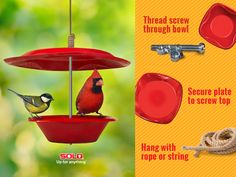With a SOLO® plastic bowl, plate and some DIY you can feed more than just mouths. Directions found here: http://po.st/Wp8vfg. #Birdfeeder #Crafts #Spring