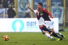 Anthony Mounier # 7 of Bologna FC in action  during the Serie A match between Bologna FC and Empoli FC at Stadio Renato Dall'Ara on December 11, 2016 in Bologna, Italy.