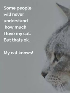 Cat Care Kittens You are buying 1 magnetic refrigerator magnetic in high gloss 20 mill photo paper. Cat Quotes, Animal Quotes, Life Quotes, Crazy Cat Lady, Crazy Cats, Chesire Cat, Cat Whisperer, All About Cats, Quotes About Cats