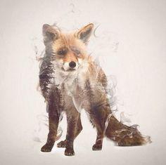 Smoky Double Exposure Animals Illustrations