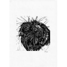 Cardboard Shipping Boxes, Animal Sketches, Fantastic Art, Linocut Prints, Guinea Pigs, Pet Portraits, Printmaking, Poppy, Hand Carved