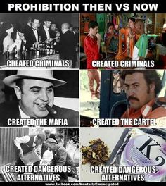Prohibition doesn't work. Less government does.