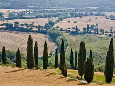 Tuscany, Italy's most exciting new hotels have diverse roots: a pig and sheep farm, a tenth-century castle, a Renaissance monastery, and, most recently, a pile of rubble.
