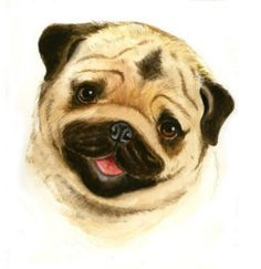 Cute Cartoon Pug | Pugsley | Pinterest | Dog and Animal