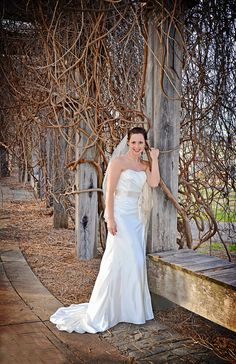 The picture Ashley chose for her bridal portrait