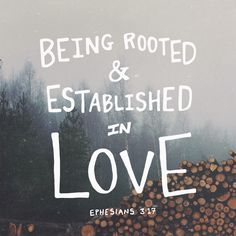 Being rooted and established in love. {Ephesians 3:17}