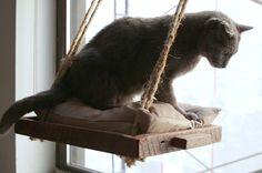 Bau deiner Katze doch mal diesen Fenster-Sitzplatz