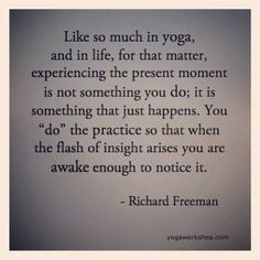 You do the yoga so that when the flash of insight arises you are awake enough to notice it -Richard Freeman