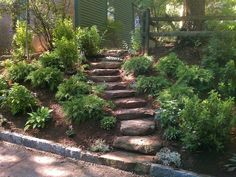 landscaping ideas for slopes | landscaping ideas backyard slopes | Improve your landscape this fall .