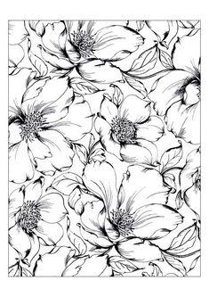 Fleurs Coloriage art-thérapie, les photos de anti-stress, des pages à colorier adultes coloration d'impression télécharger
