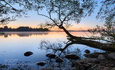 Those quiet mornings by ckeller  trees rock calm tranquil early quiet Morning Those quiet mornings ckeller