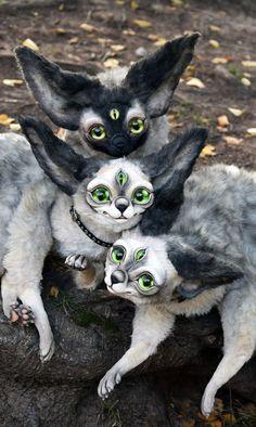 Wenn Sie sich immer noch nicht entscheiden, wie viele Katzen Sie wünschen, ein oder zwei, diese Kitties wären absolut perfekt.