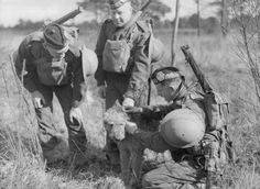 A Canadian soldier fixes a message to the collar of an Airedale dog, as two other Canadian soldiers look on, during a training exercise somewhere in Britain.