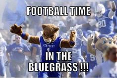 Wildcats---miss attending UK football games. Uk Football Game, University Of Kentucky Football, Kentucky Sports, Kentucky Basketball, Wildcats Basketball, Go Big Blue, First Down, Alma Mater, Tailgating
