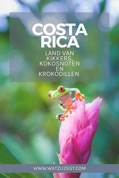 Costa Rica: ultiem chillen met een kokosnoot in het land van kikkers en krokodillen