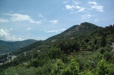 Ventimiglia (IM) Monte Magliocca: Cava Bergamasca