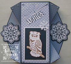 En dan vandaag deel 2 uit de serie Wintertide van Amy Design. Deze keer heb ik de uil en de sneeuwster gebruikt. En voor de kaa... Fancy Fold Cards, Folded Cards, Card Making Tips, Big Shot, Winter, Templates, How To Make, Labels, Tags
