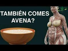 Investigadores explican Lo que pasa en tu cuerpo Cuando comes avena cada...