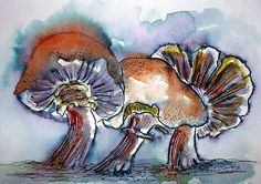 MAGIC MUSHROOMS....:)Watercolor & Ink Once again, the beginning ink is the Elegant Writer calligrapy pen which I used to draw the mushrooms...then I wet the lines with brush and water which makes an explosion of blue/pink/grey....then I added the watercolor....finally touches from a Micron pen and a Pentel white gel pen...:)