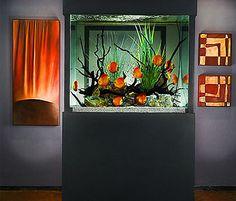 10 Tips on Designing a Freshwater Nature Aquarium Aquarium Aquascape, Aquarium Terrarium, Home Aquarium, Nature Aquarium, Saltwater Aquarium, Aquarium Fish Tank, Planted Aquarium, Freshwater Aquarium, Aquascaping