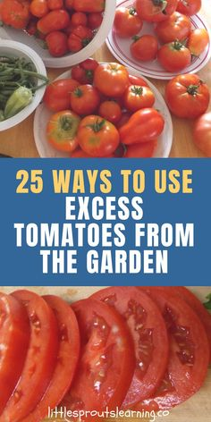 25 Ways to Use Excess Tomatoes from the Garden. There's a time of the year when produce from your garden is drowning you from every side. What do you do with all the excess tomatoes your garden produces? 25 Ways to Use Excess Tomatoes from the Garden Garden Tomato Recipes, Fresh Tomato Recipes, Vegetable Recipes, Tomato Ideas, Tomato Canning Ideas, Veggie Food, Real Food Recipes, Healthy Recipes, Pork Recipes