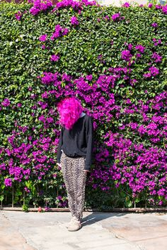 """A few years ago my wife dyed her hair. I was amazed to find flowers the same color on this bush in Lima.""  Will Sanders"