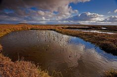 Launch of new Peatland Code could save more than 200 million tons of carbon dioxide