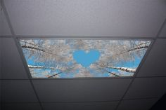 Forest Love Skypanels - Replacement Fluorescent Light Diffuser