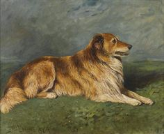 Roy, a Collie in a Landscape by John Emms | Art Posters