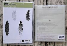 NEW STAMPIN' UP! FOUR FEATHERS STAMP SET AND FRAMELITS FEATHERS DIES - NEW