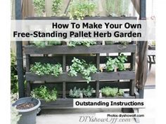 how to grow herbs in your kitchen - Google Search