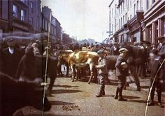Livestock fair Galway, 1 May, Old colour photos of Ireland in 1913 Epic Photos, Old Photos, First Color Photograph, Albert Kahn, Images Of Ireland, Portraits, Donegal, Photo Projects, The Good Old Days
