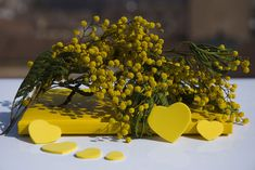 On the 8th of March the importance of women is celebrated by the giving and receiving of mimosa blossom