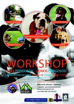 """Workshop   """"cães perigosos"""""""