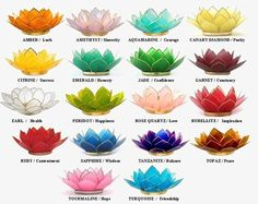 lotus flower color meanings Lotus Capiz Shell Candle Holders Create an Alluring Atmosphere Lotus Flower Color Meaning, Lotus Flower Colors, Colorful Flowers, Lotus Meaning, Lotus Flower Meanings, Lotus Flower Tattoo Meaning, Small Lotus Tattoo, Flower Tattoo Meanings, Purple Lotus Tattoo